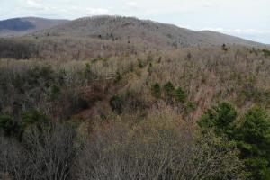 14 Acres in McCoy Minutes from Blacksburg in Montgomery, VA (6 of 12)