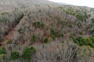 14 Acres in McCoy Minutes from Blacksburg in Montgomery, VA (12 of 12)