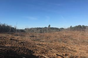 Jackson Road Hunting Tract in Lamar, AL (6 of 8)