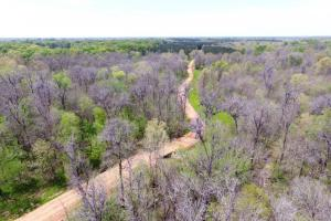 Big Swamp Creek Hunting & Timber Tract - Lowndes County AL