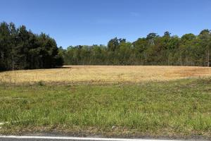 Farmland and Investment Property - Dorchester County SC