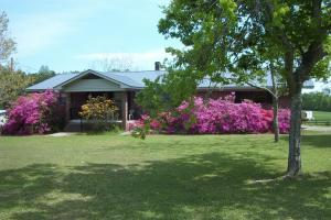 Barrytown Farm and Recreational Retreat in Choctaw, AL (4 of 55)