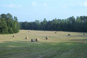 Barrytown Farm and Recreational Retreat in Choctaw, AL (7 of 55)