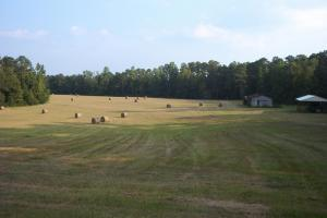 Barrytown Farm and Recreational Retreat in Choctaw, AL (2 of 55)