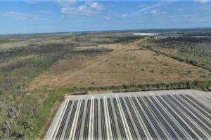 Estero SWFL Farmland Investment Opportunity in Lee, FL (1 of 5)