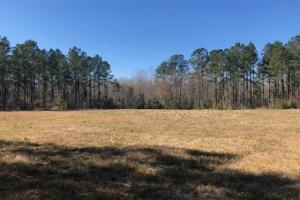 Savannah Creek Rec Tract B - Berkeley County SC