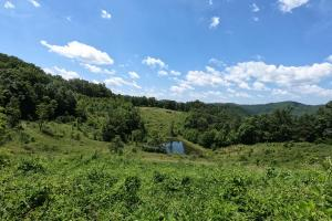 Pond, 150 Acres of Mountain Forests, Fields, Views and Waterfalls (9 of 74)