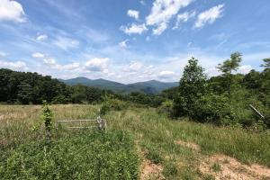 Former pasture, 150 Acres of Mountain Forests, Fields, Views and Waterfalls (7 of 74)