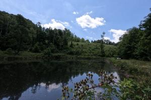 150 Acres of Mountain Forests, Fields, Views and Waterfalls in Henderson, NC (2 of 74)