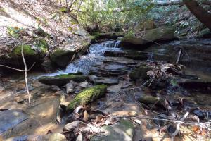 150 Acres of Mountain Forests, Fields, Views and Waterfalls in Henderson, NC (33 of 74)