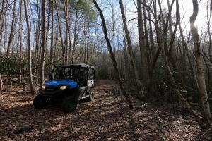 Excellent woodland trails for ATVs or horses (57 of 74)