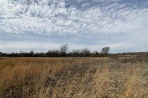 Elsmore Hunting and Farmland in Allen, KS (19 of 34)