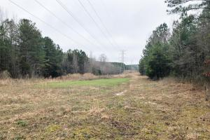 CR 11 Red Bay Hunting and Timber Investment in Franklin, AL (14 of 15)
