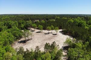 Springvale Recreational Tract with Homesite and Pond in Kershaw, SC (29 of 29)