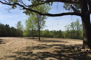 Springvale Recreational Tract with Homesite and Pond in Kershaw, SC (2 of 29)