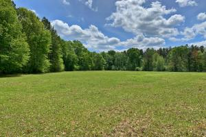 Gilbertown Farm and Industrial Tract - Choctaw County AL