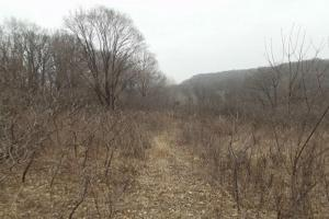 20+ Recreational Acres Southwest Wisconsin in Grant, WI (3 of 23)