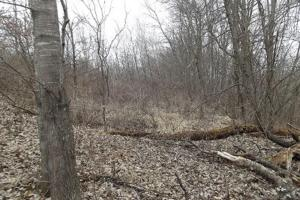20+ Recreational Acres Southwest Wisconsin in Grant, WI (5 of 23)