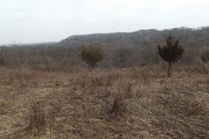 20+ Recreational Acres Southwest Wisconsin in Grant, WI (7 of 23)