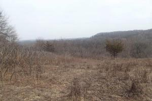 20+ Recreational Acres Southwest Wisconsin in Grant, WI (8 of 23)