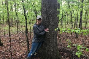 Hardwood Trees (10 of 10)