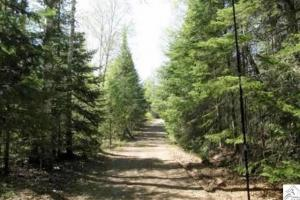 #14 20 Acres Hunting, Recreational, Woods, Timber, Finland - Lake County MN