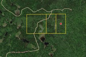 #16 0 God's  Wilderness Rd,  Finland, Hunting, Recreational Land - Lake County MN