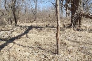 20+/- Acres Recreational Property, Hunting, Fishing, Hiking, Camping in Iowa, WI (11 of 17)