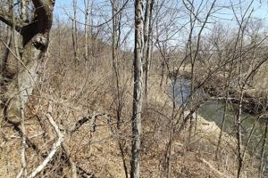 20+/- Acres Recreational Property, Hunting, Fishing, Hiking, Camping in Iowa, WI (10 of 17)