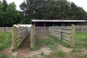 Cattle pens (27 of 29)