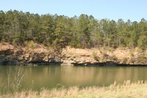 Bremen Recreational Tract in Cullman, AL (9 of 20)