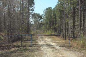 Bremen Recreational Tract in Cullman, AL (1 of 20)