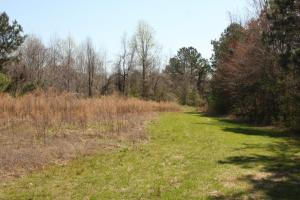 Bremen Recreational Tract in Cullman, AL (15 of 20)