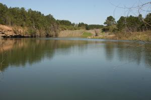 Bremen Recreational Tract in Cullman, AL (10 of 20)