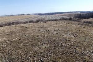 17+/- Acres Long-range views a spring, pasture and crop ground in Lafayette, WI (6 of 11)