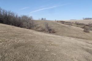 17+/- Acres Long-range views a spring, pasture and crop ground in Lafayette, WI (9 of 11)