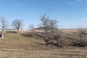 17+/- Acres Long-range views a spring, pasture and crop ground in Lafayette, WI (8 of 11)