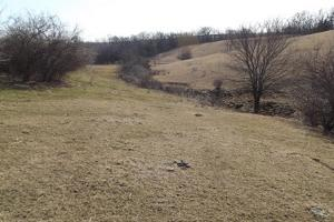 17+/- Acres Long-range views a spring, pasture and crop ground in Lafayette, WI (3 of 11)