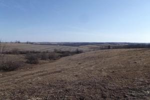 17+/- Acres Long-range views a spring, pasture and crop ground in Lafayette, WI (2 of 11)