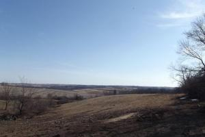 17+/- Acres Long-range views a spring, pasture and crop ground in Lafayette, WI (5 of 11)