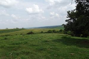 17+/- Acres Long-range views a spring, pasture and crop ground in Lafayette, WI (11 of 11)