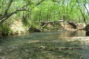 Creek flowing toward the swimming hole. (6 of 42)