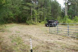 LARGE WOODED RANCHETTE HOMESITE- Tract 3 in Montgomery, TX (12 of 18)