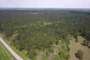 LARGE WOODED RANCHETTE HOMESITE- Tract 3 - Montgomery County TX