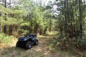 LARGE WOODED RANCHETTE HOMESITE-21.5 - Montgomery County TX