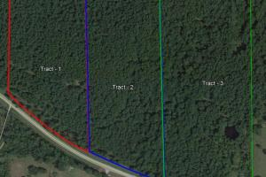 LARGE WOODED RANCHETTE HOMESITE- Tract 3 in Montgomery, TX (2 of 18)