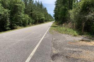 Dyas Road Recreational and Timber Investment Tract in Baldwin, AL (19 of 21)