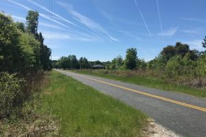 The Cantey Tract in Clarendon, SC (13 of 13)