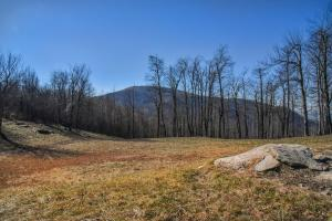Panoramic views from unrestricted acres minutes to Asheville in Buncombe, NC (18 of 19)