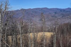 Panoramic views from unrestricted acres minutes to Asheville in Buncombe, NC (17 of 19)